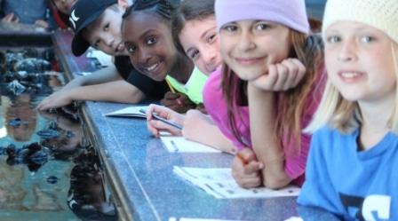 Courtyard School students on field trip